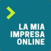 Realizzazione ecommerce Lugano Shopify